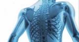 Схуднення робить кістки крихкими, – результати дослідження