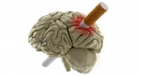 П'ять цікавих фактів про те, як куріння впливає на мозок