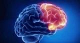 Вчені знайшли спосіб зберегти нервові клітини у пацієнтів з розсіяним склерозом